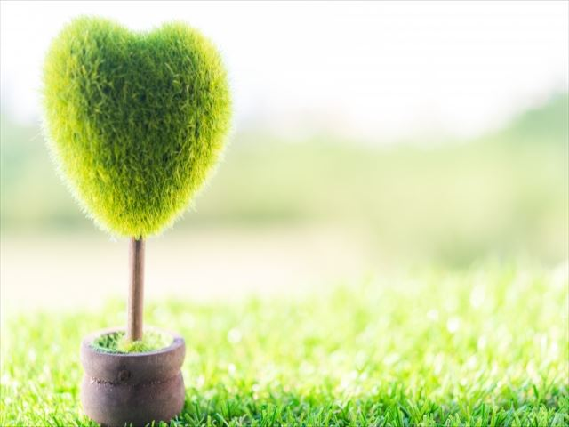 緑あふれる絶景のパノラマ~会いに行きたくなる霊園~
